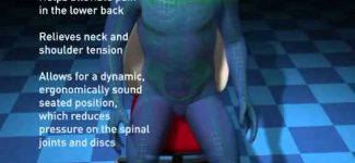 Easy Posture Lumbar Back Support Mesh